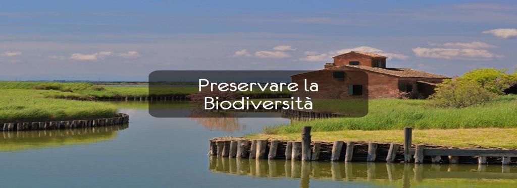 Preservare la Biodiversità – Il Parco del Delta del Po