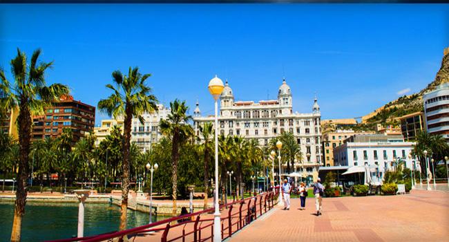 icona Alicante 4