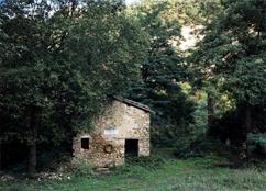 Foto 4 Friuli Seconda Guerra