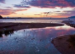 Foto 1 La Riviera Ligure di Ponente